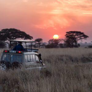 tanzania safari auto