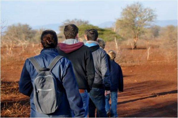 Bush Walk Pongola