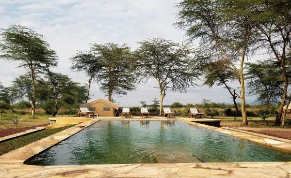 Zwembad bij Africa Safari Lodge